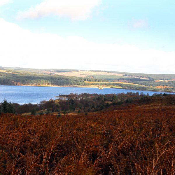 Kielder Water - Gordon Charlton