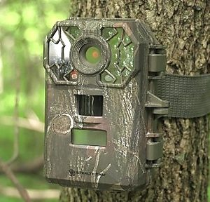 Best-Trail-Camera-Reviews2