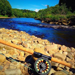 Book fishing