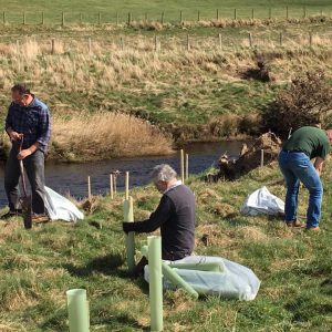 Tree planting otterburn volunteers