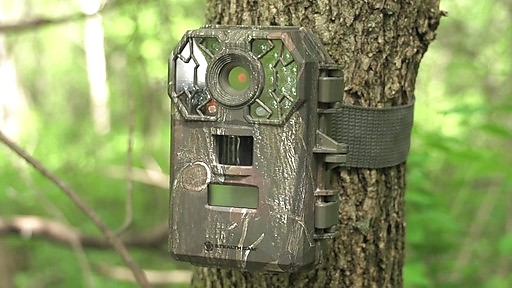 Image result for trail camera