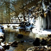 January - Icicles at the bridge, Ashgill Waterfall by Norma McKellar (Sheerlight Photography) - high res